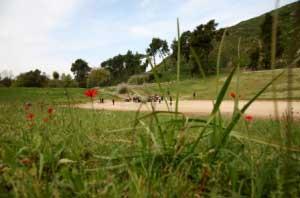 Ολυμπία: Το Στάδιο
